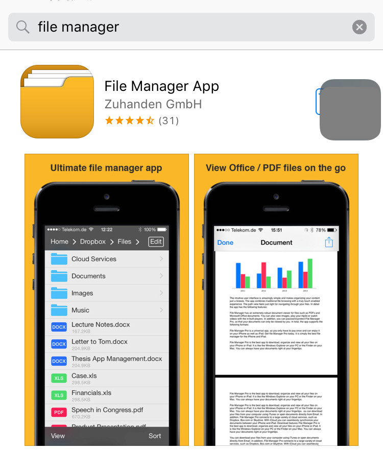 download File Manager
