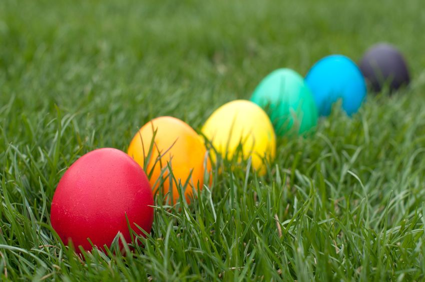 Fun-Easter-Eggs-Hunting
