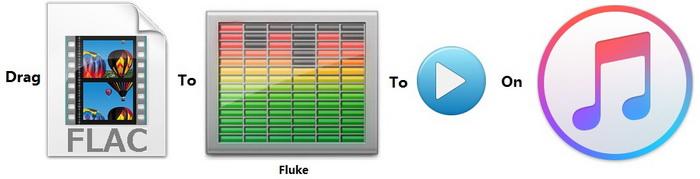 flac codec songs download