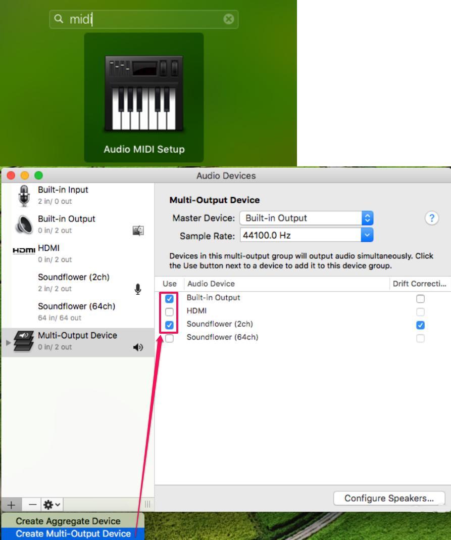 Setup Audio Output