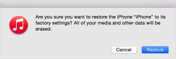 iPad confirm restore