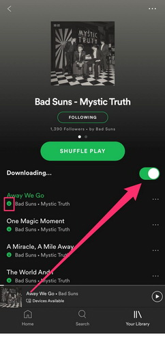 how-to-download-music-to-Samsung-with-Spotify-02