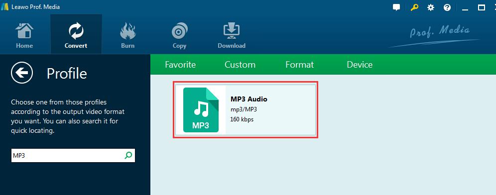 choose-MP3-format-6
