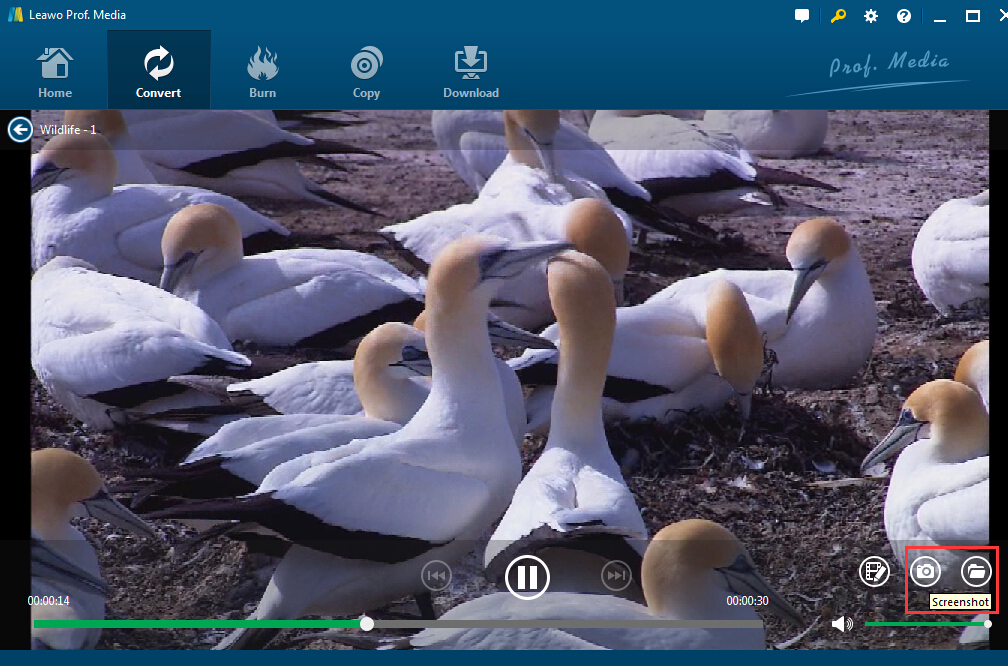 mp4-to-jpg-screenshot-3