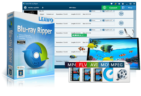 best blu ray video converter