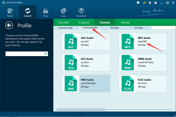 choose MP3 as the output format