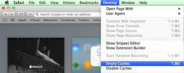 Remove Safari cache, history and website data