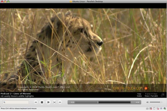 Miro media player for opening M4V videos on Ubuntu