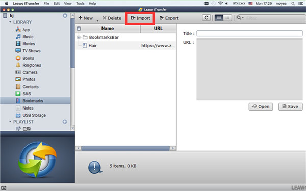 Import Bookmarks to iPhone