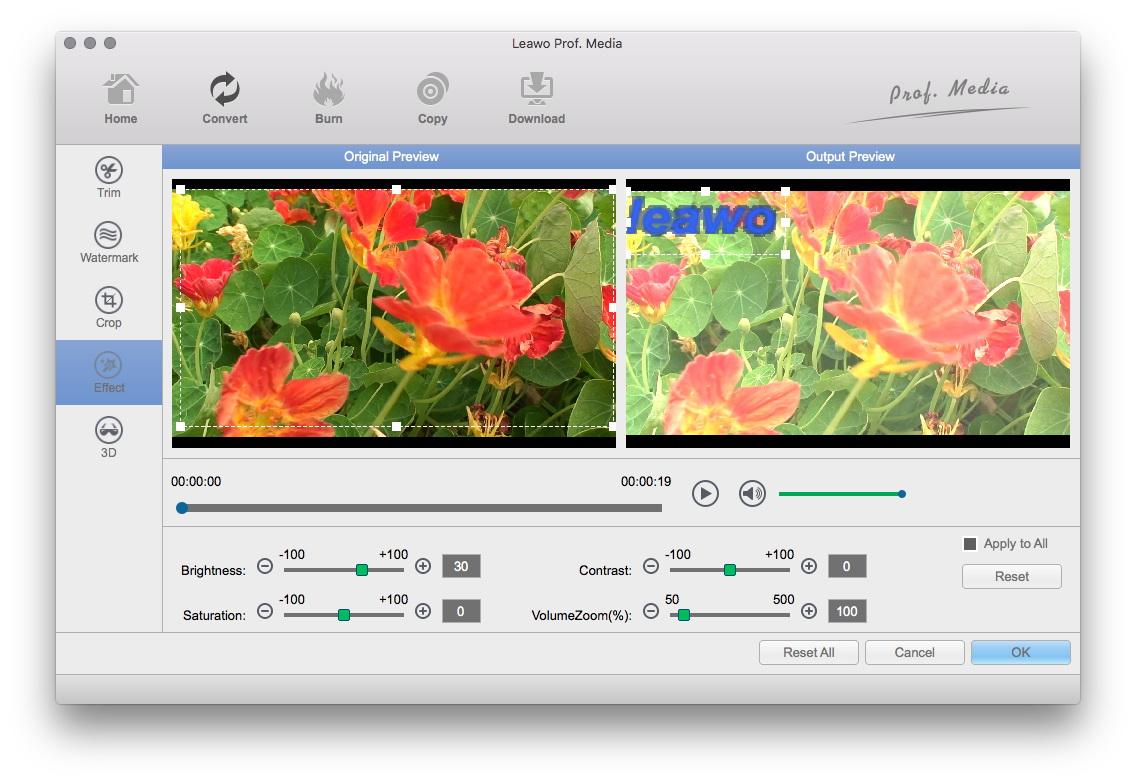 Adjust Video Effects
