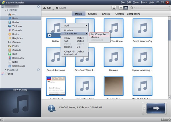 How to Transfer Data from Old iPad to New iPad Alternative with Leawo iTransfer-02