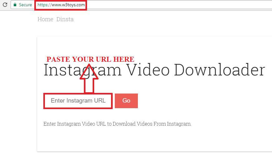 3 Best Online Instagram Video Downloader | Leawo Tutorial Center