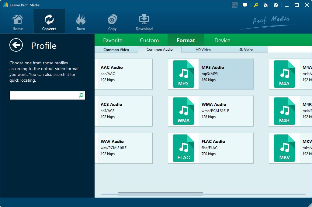 Set MP3 as output format