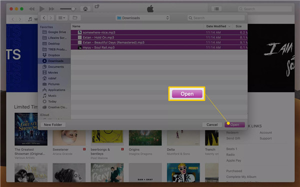 choose-music-files-you-want-to-transfer-and-click-open-button-7