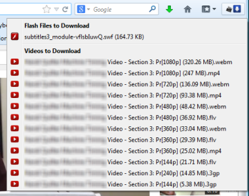 Flash-Video-Downloader-to-download-songs-6