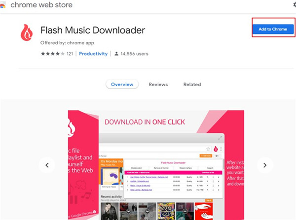 flash-music-downloader-add-to-chrome-10