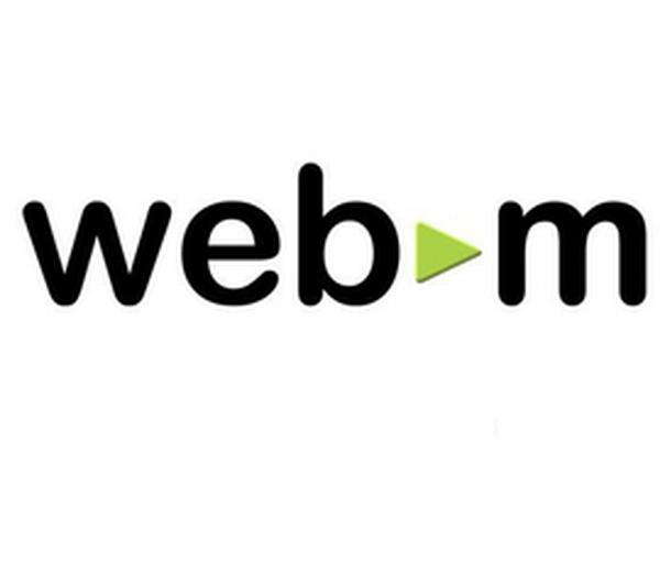 part1 WEBM