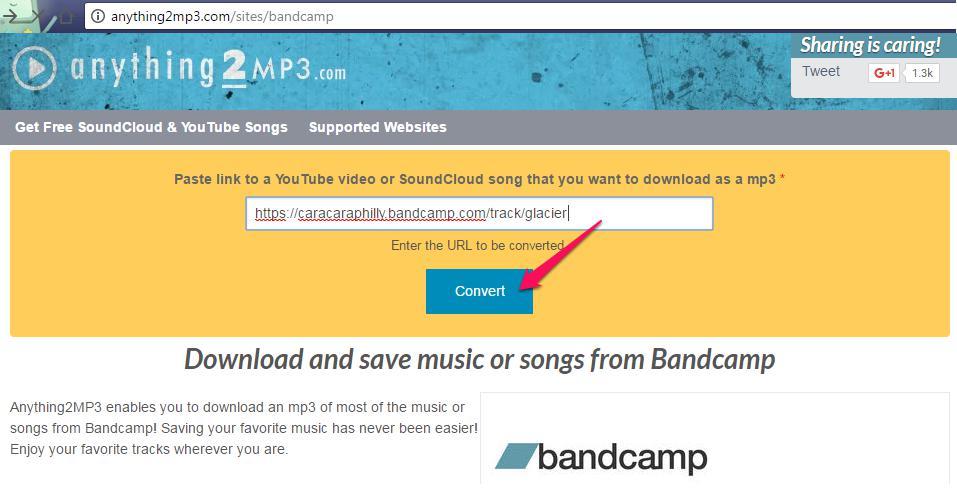 Download-Music-from-Bandcamp-via-online-downloader-input-url-02