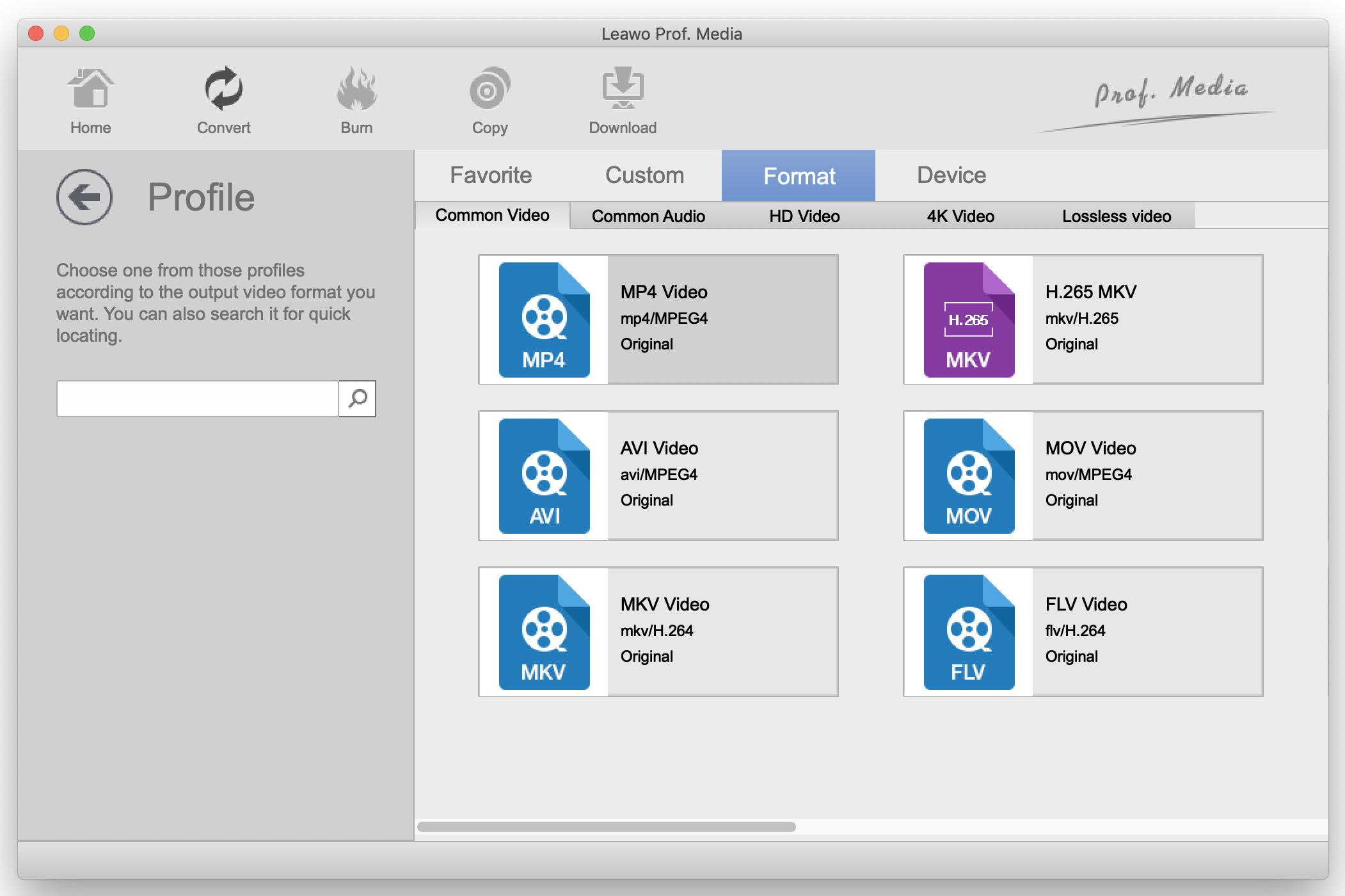 Leawo-output-profile-menu-video-audio-formats