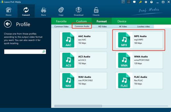 play-aac-on-windows-media-player-leawo-video-converter--format