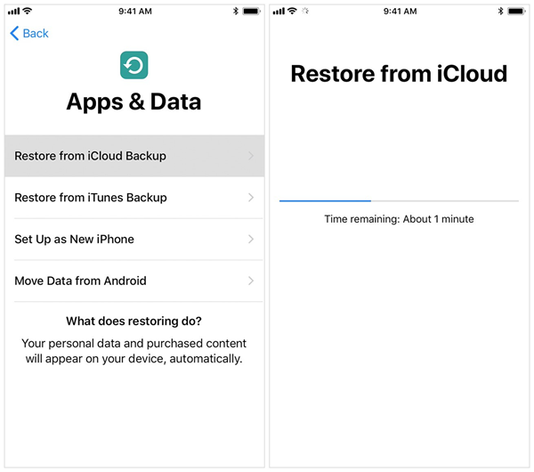 recover-data-from-icloud-backup-04