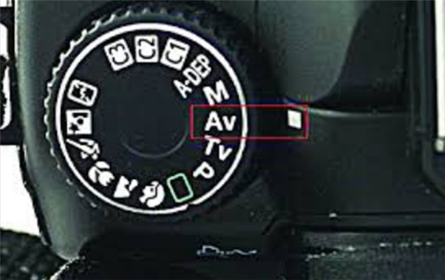 5-tips-on-how-to-adjust-exposure-adjust-shutter-speed-or-apply-aperture-priority-mode-4