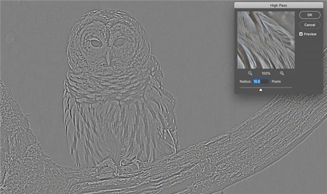 5-ways-to-sharpen-image-in-photoshop-high-pass-filter-4