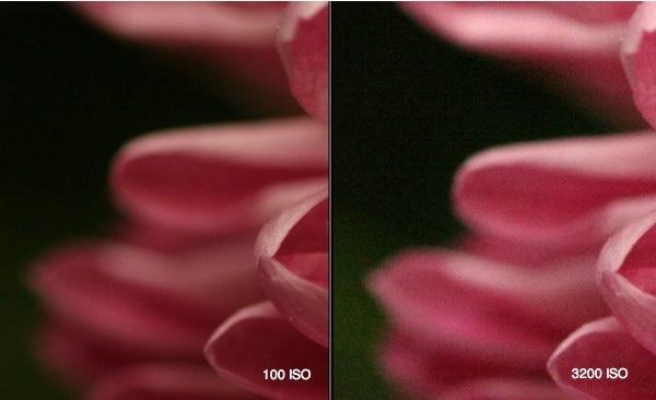 iso-settings-1