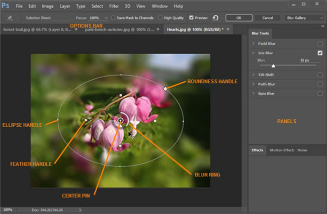 how-to-add-bokeh-effect-in-photoshop-on-computer-adjust-8