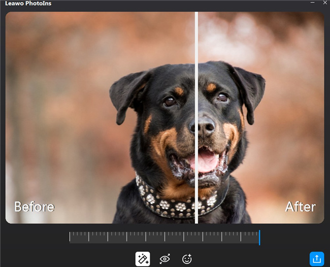 how-to-enhance-bokeh-effect-photos-on-computer-with-leawo-photoins-preview-11