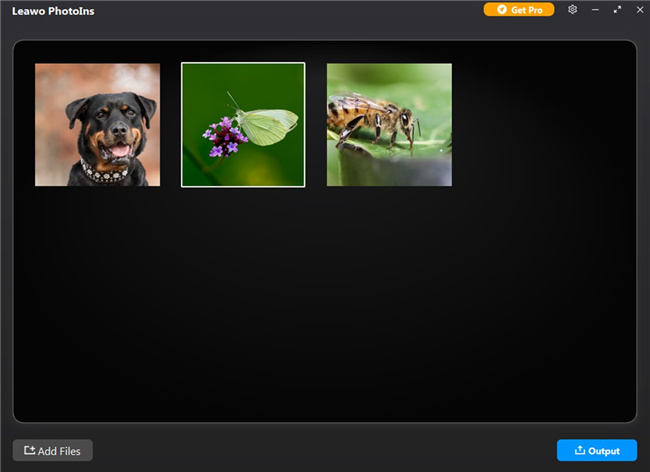 how-to-enhance-photos-with-bokeh-photography-effect-with-leawo-photoins-add-7