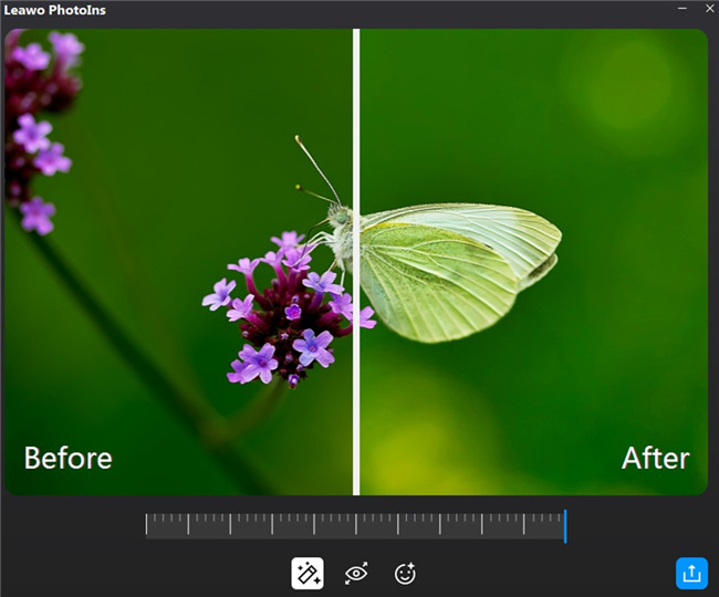 how-to-enhance-photos-with-bokeh-photography-effect-with-leawo-photoins-preview-8