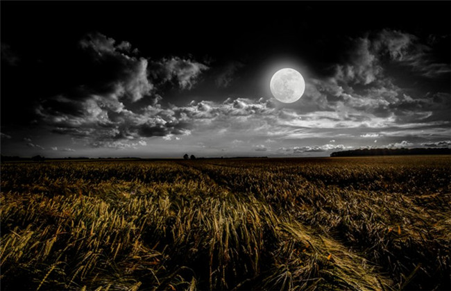 how-to-make-use-of-iso-for-better-photo-quality-shoot-moon-8