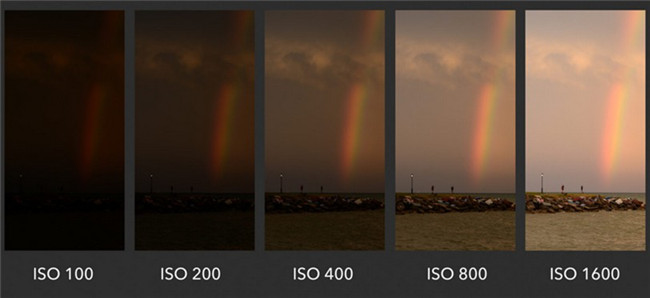 what-does-iso-stand-for-in-photography-meaning-1