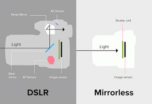 Mirrorless vs. DSLR Intro