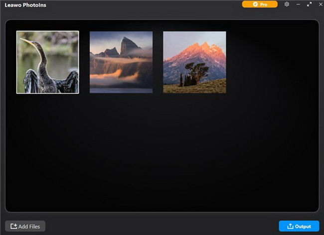 how-to-enhance-photos-taken-by-zoom-lens-with-leawo-photoins-add-file-7