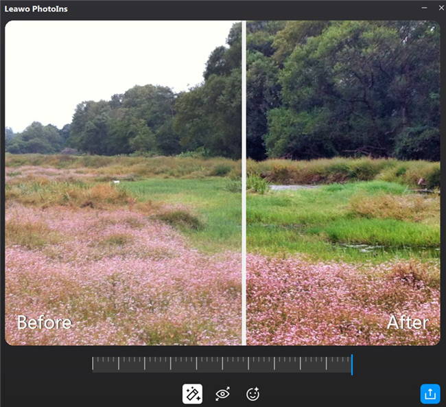 how-to-fix-unclear-photos-shot-with-digital-zoom-fix-7