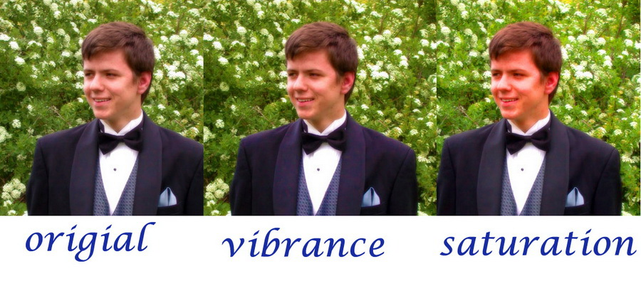 Color Saturation vs. Vibrance