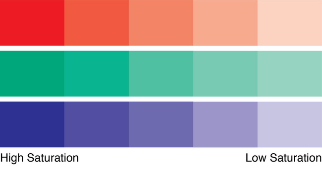 What is Color Saturation in Photography-2