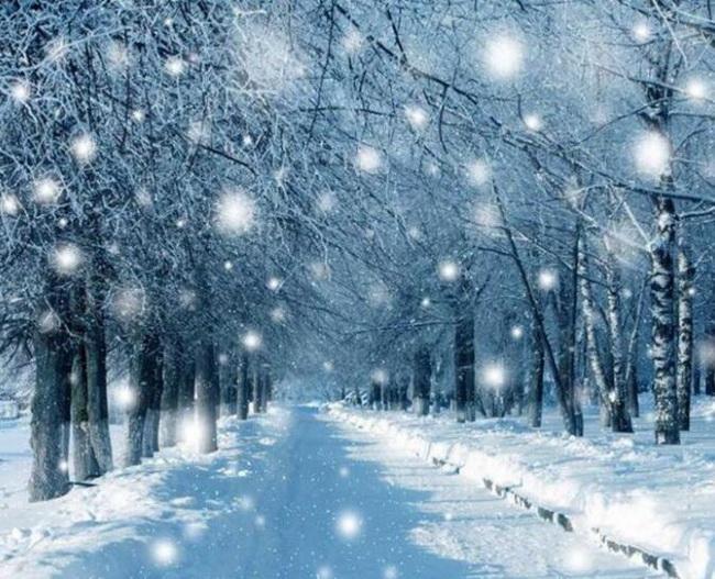 12-best-winter-photoshoot-ideas-falling-snow