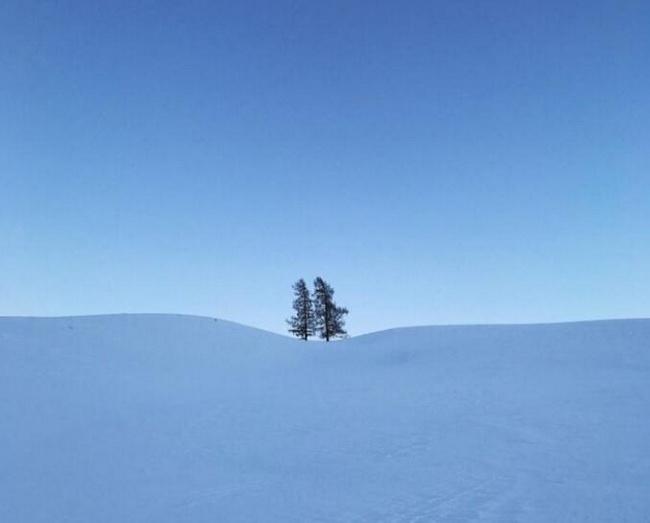 simple-snow-view