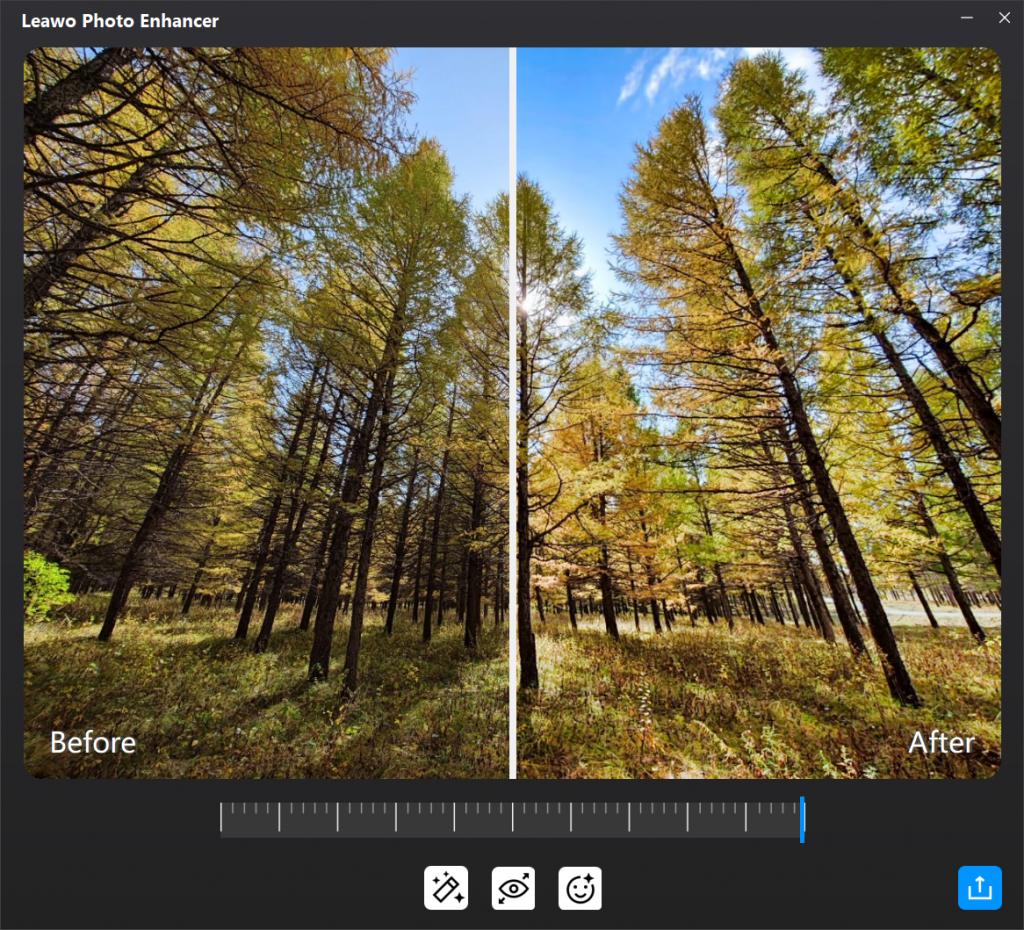 how-to-enhance-photo-before-making-photo-album-book-2