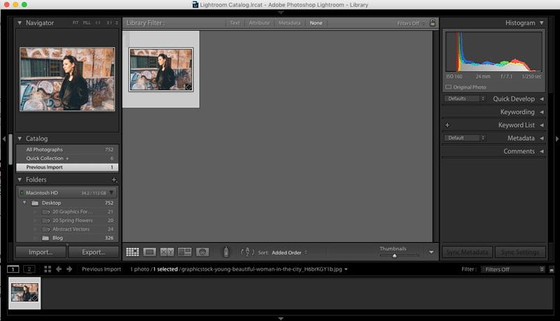 Blur-Background-in-Lightroom-1