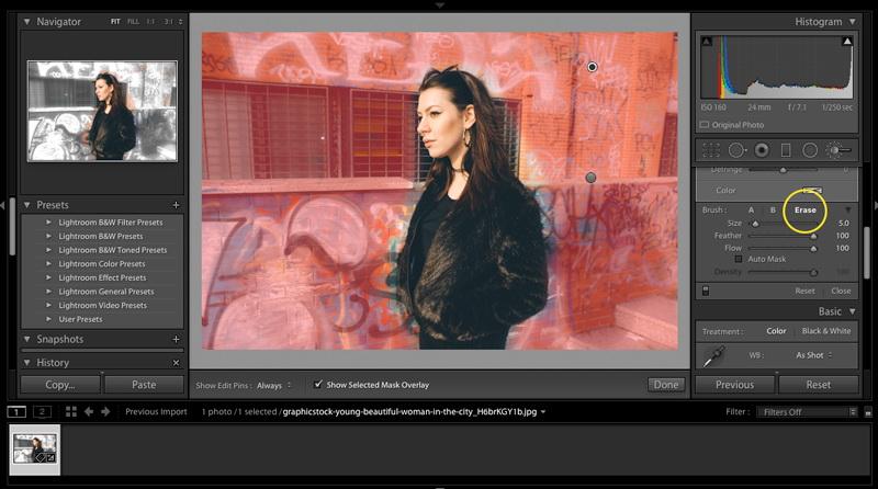 Blur-Background-in-Lightroom-2