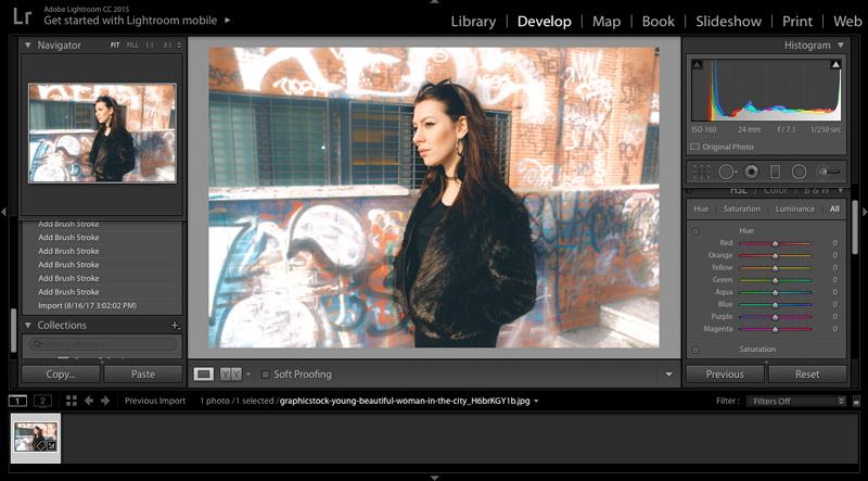 Blur-Background-in-Lightroom-3