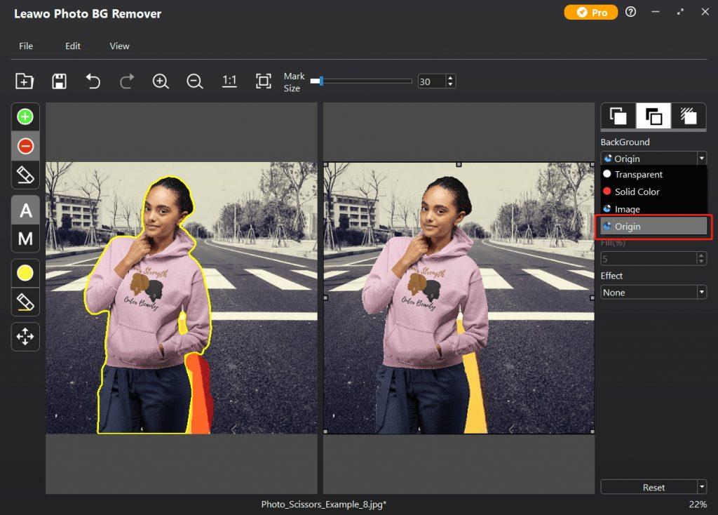 blur-background-in-photo-bg-remover-blur-background-2