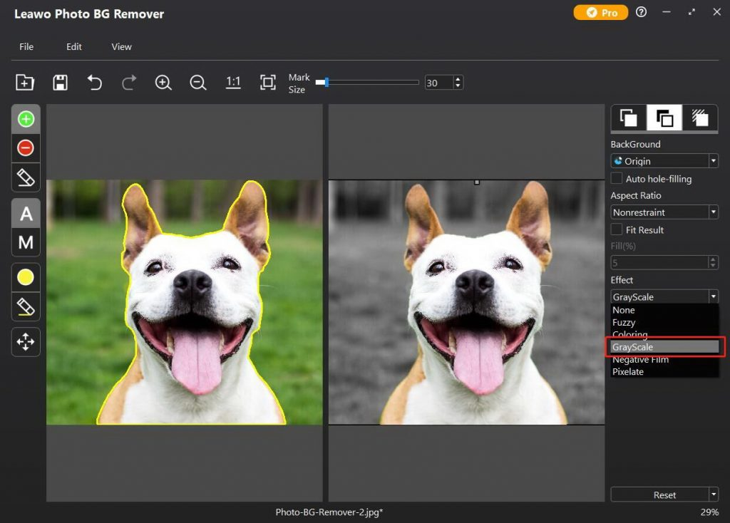 how-to-make-image-black-and-white-in-Leawo-Photo-BG-Remover-03