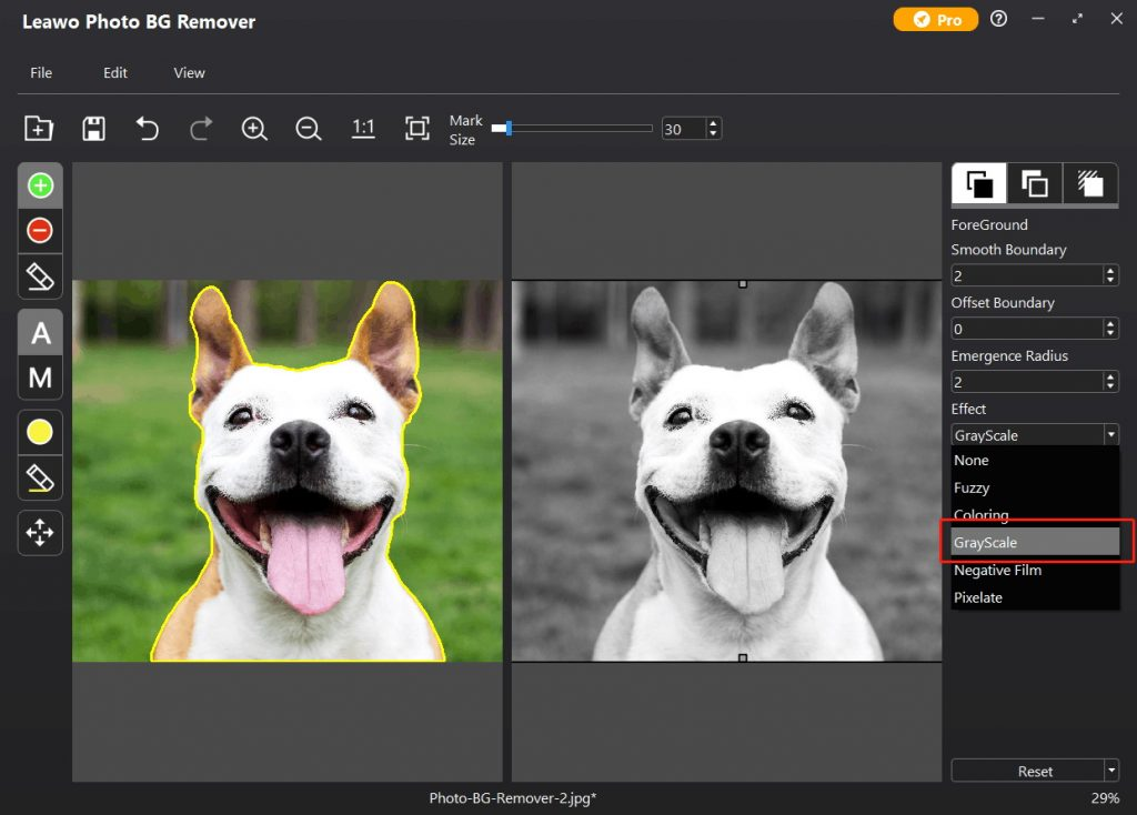 how-to-make-image-black-and-white-in-Leawo-Photo-BG-Remover-04