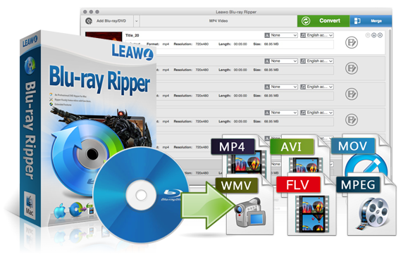 The Five Best DVD Rippers for Mac - toptenreviews.com