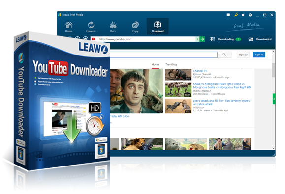 youtube video-downloader